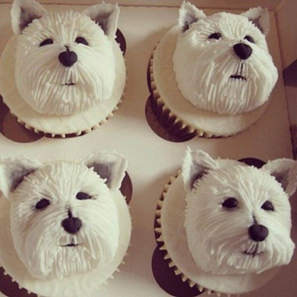 Perfect White Dog Cupcakes