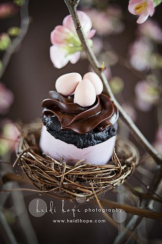 Beautiful Chocolate Easter Cupcake