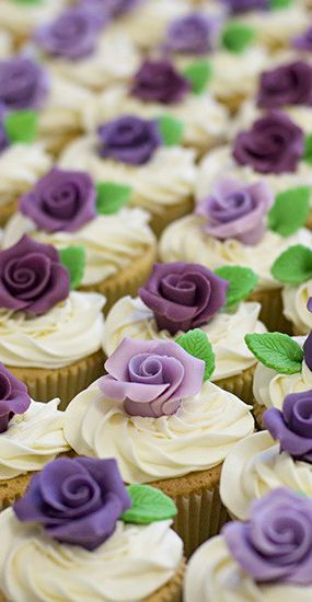 Shaded Purple Rose Cupcakes
