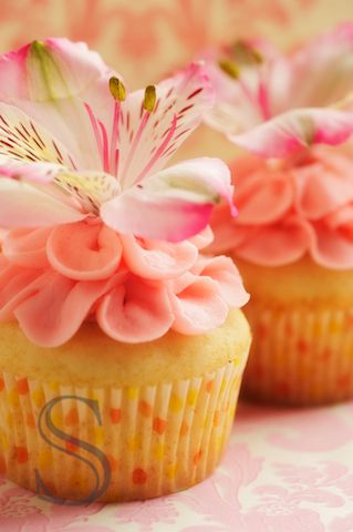 Beautiful Hibiscus Cupcakes