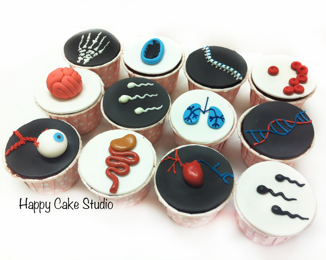 Anatomy And Biology Cupcakes Cupcakes Gallery